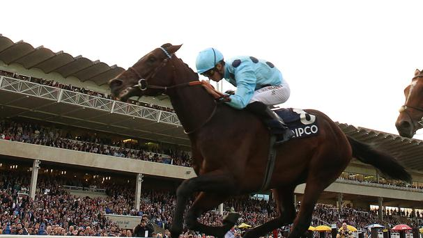 Almanzor wins the QIPCO Irish Champion Stakes at Leopardstown