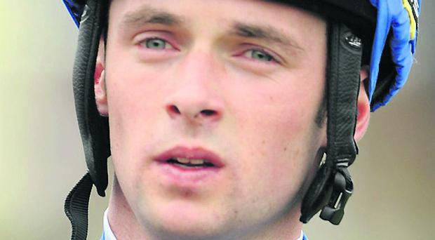 Jockey Rory Cleary: 16/1 winner Photo: Sportsfile