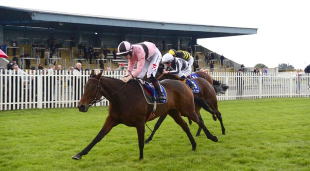 Toe The Line wins at Naas