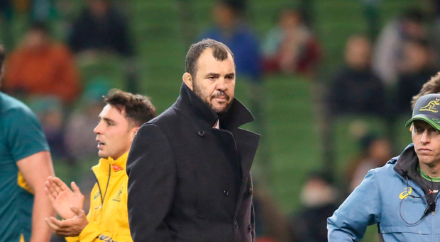 Australia coach Michael Cheika: 'I don't want to get myself in any strife'. Photo: AFP/Getty