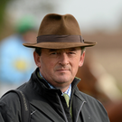 Eddie O'Leary: 'beautiful horse'