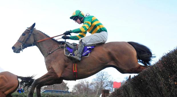 Carlingford Lough and jockey Mark Walsh on their way to victory in the 2016 Irish Gold Cup at Leopardstown