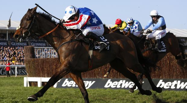 Special Tiara isn't for catching in the Champion Chase