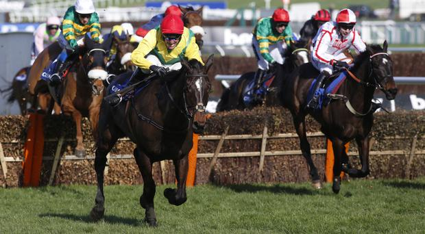Supasundae comes clear in the Coral Cup last year