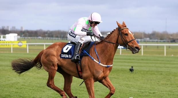 Annie Power is in foal to Camelot. Her progeny would be worth a lot of money