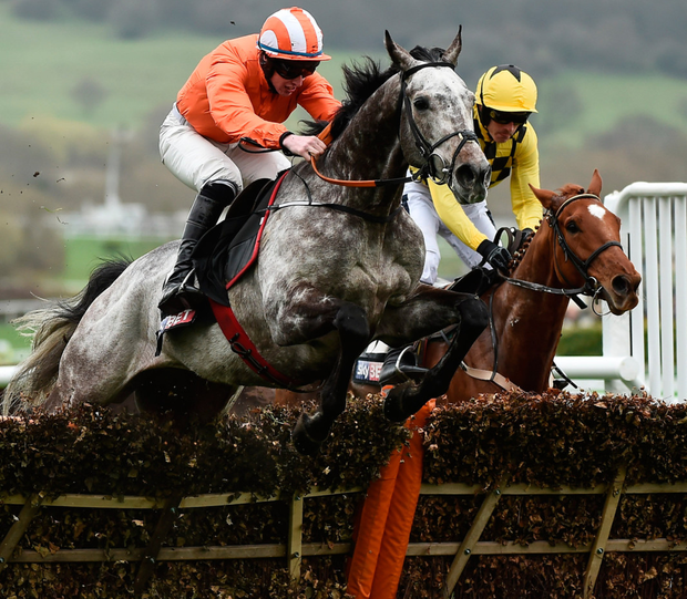 Labaik, under Jack Kennedy, gets the better of Melon (right) in the Supreme Novices' at Cheltenham – the pair renew rivalry at Punchestown today. Photo: Sportsfile