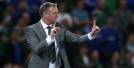 Michael O'Neill has named his Northern Ireland squad to play New Zealand and Azerbaijan