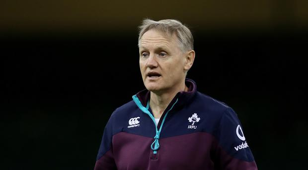 Head coach Joe Schmidt