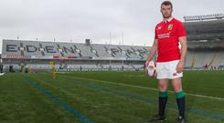 Peter O'Mahony has been tipped to