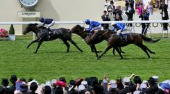 Caravaggio leads home the big three in the Commonwealth Cup