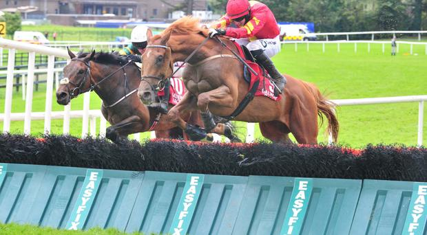 Aydoun (near) wins at Galway