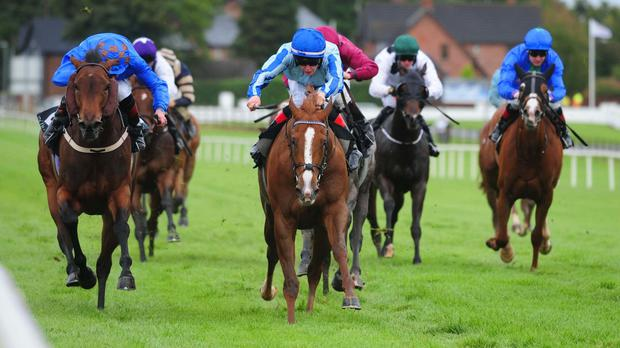 Focus Of Attention wins at Down Royal