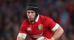 Ireland flanker Sean O'Brien starred for the British and Irish Lions in New Zealand earlier this year