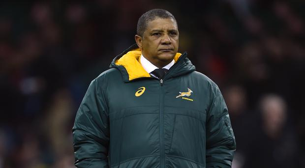 Allister Coetzee believes South Africa will be underdogs in Dublin