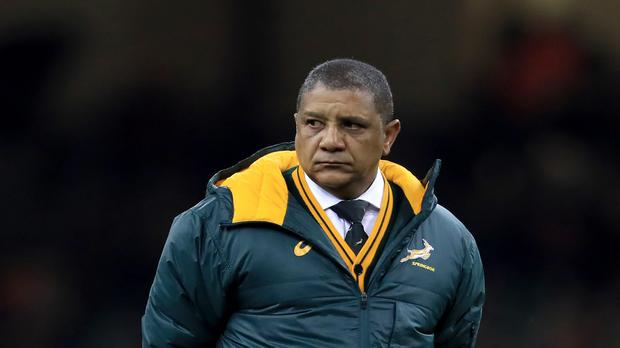 South Africa coach Allister Coetzee struggled to find positives after the loss to Ireland