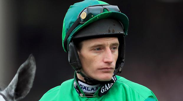 Jacob: Any of the four could win Tingle Creek