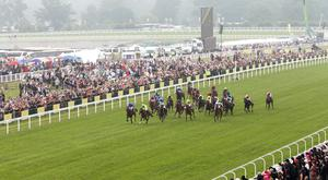Ridden by William Buick, Pinatubo travelled strongly in the middle of pack before throwing down his challenge down the centre of the track (stock photo)