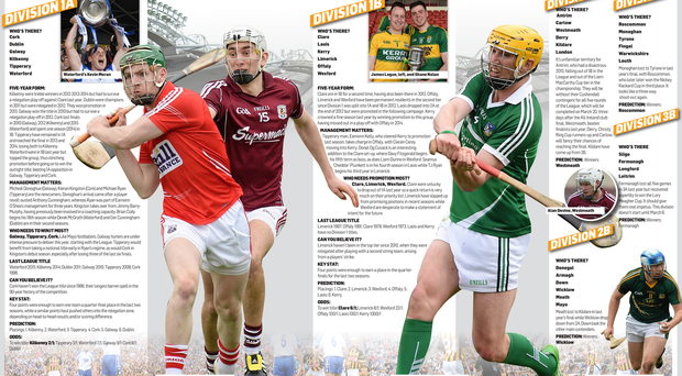 <a href='http://cdn-03.independent.ie/incoming/article34449396.ece/ac4b2/binary/SPORT-Hurling-preview.png' target='_blank'>Click to see a bigger version of the graphic</a>