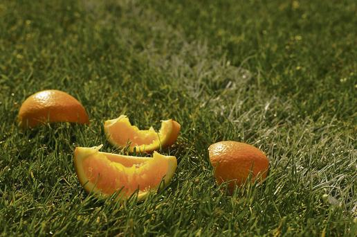 Discarded half eaten orange pieces on grass: oranges are a good source of vitamin C