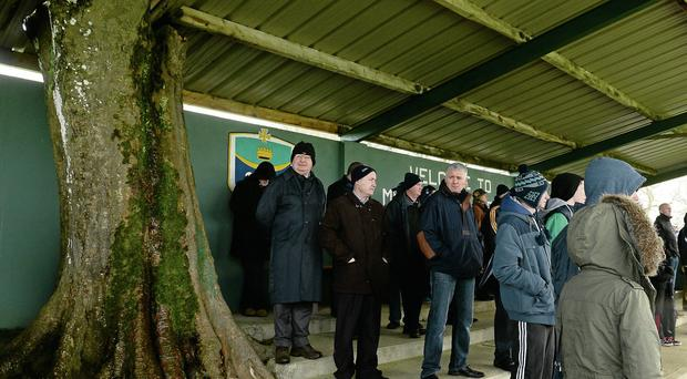 A general view of the main stand with a tree going through it before the start of the FBD League game between Roscommon and Mayo in Michael Glaveys GAA Club in Roscommon David Maher/SPORTSFILE
