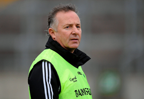 Laois manager Mick Lillis (SPORTSFILE)