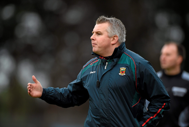 Mayo boss Stephen Rochford. Photo: Sportsfile
