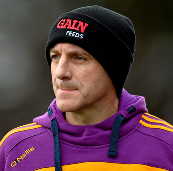 Wexford hurling boss Liam Dunne: 'We're not thinking beyond next Sunday' SPORTSFILE