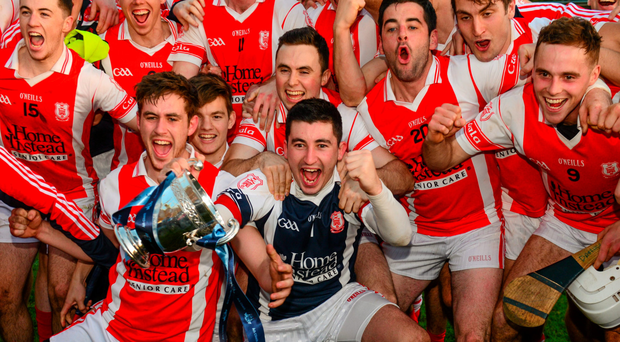 Cuala players celebrate their Dublin SHC final success in Parnell Park