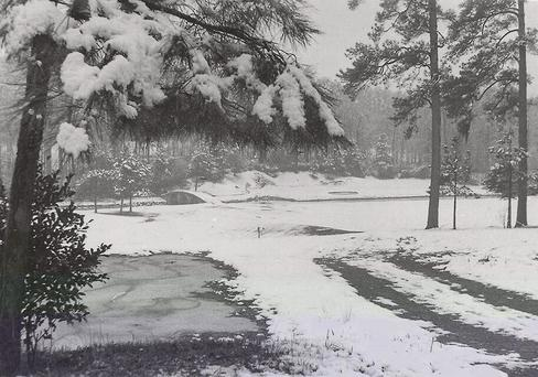 The scene at Augusta National yesterday as posted on Twitter by one of the course's greenkeepers