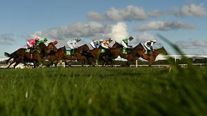 Runners and riders during last September's Listowel Vintners Association Flat Race. Photo: Harry Murphy/Sportsfile