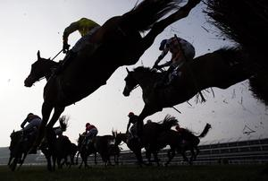 Figures released this week by Horse Racing Ireland (HRI) show that the Irish bloodstock industry is going from strength-to-strength in line with increasing wealth. Photo: AFP/Getty Images