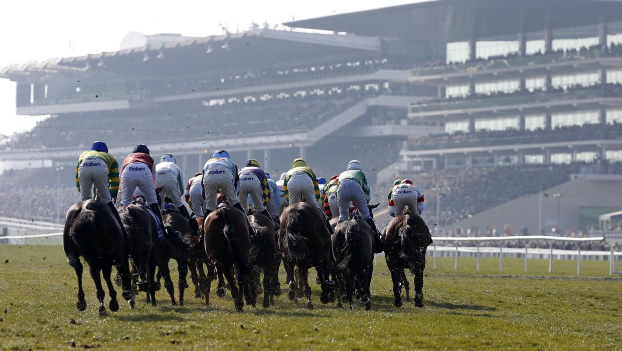 Aintree and Cheltenham to host spectators for big December meetings