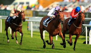 Turret Rocks (left) captures the May Hill Stakes in the hands of Jim Bolger