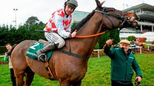 Anthony Lynch celebrates on Flemenstar after winning the Paddy Power Dial-a-Bet chase on Day 2 of the Leopardstown Christmas Festival Photo:Sportsfile