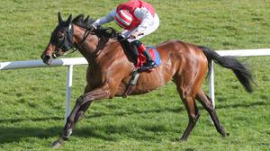 Mighty Blue, ridden by Dylan Browne McMonagle, winning The Irish Stallion Farms EBF Vintage Tipple Stakes at Gowran Park yesterday. Photo: Caroline Norris/Racing Post