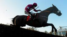 Don Cossack, with Brian O'Connell up on their way to winning the John Durkan Memorial Punchestown Steeplechase