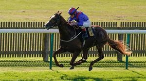 Andrea Atzeni riding Nayef Road win The Jockey Club Rose Bowl Stakes at Newmarket. Photo: by Alan Crowhurst/Getty Images