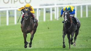 Dragon Symbol, with Oisín Murphy on board (right) beats Campanelle and Frankie Dettori in the Commonwealth Cup at Ascot last June. Photo: Edward Whitaker/Racing Post