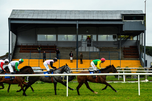 Stable grooms and officials watch the Pierce Molony Memorial Novice Steeplechase from the stand while maintaining social distancing at Thurles Racecourse yesterday. Photo: Matt Browne