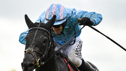 The Shunter and jockey Brian Hayes on their way to winning the SalesSense Beginners Steeplechase at Punchestown last September. Photo: Seb Daly/Sportsfile