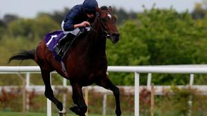 Bolshoi Ballet, ridden by Ryan Moore, on the way to winning the Derrinstown Stud Derby Trial Stakes (Group 3) at Leopardstown yesterday. Photo: Brian Lawless/PA