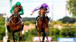 St Mark's Basilica landed the odds in a pulsating renewal of the Irish Champion Stakes at Leopardstown