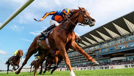 Love can take her Group One tally to six in today's King George VI And Queen Elizabeth Qipco Stakes at Ascot. Photo: David Davies/PA Wire