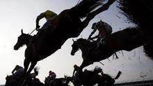 Horses jump a fence during the Cheltenham Gold Cup Steeple Chase on the final day of the Cheltenham Festival horse racing meeting at Cheltenham Racecourse in Gloucestershire, South West England, on March 14, 2014. AFP PHOTO / ADRIAN DENNIS        (Photo credit should read ADRIAN DENNIS/AFP/Getty Images)