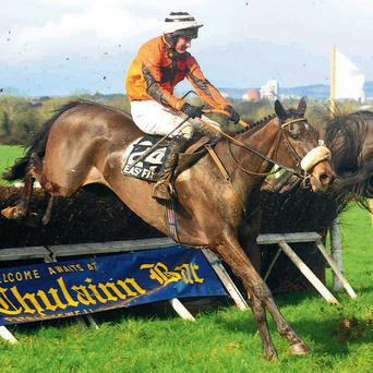 The Tullow Tank finishes second on his point-to-point debut – after this, Sean O'Brien and his fellow owner sold the horse to Dublin stockbroker Barry Connell