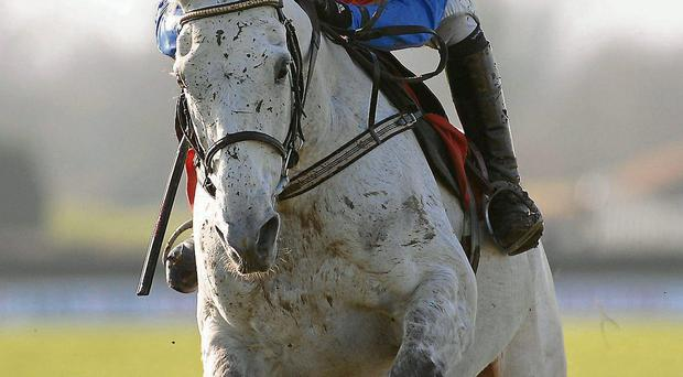 Thousand Stars, pictured here winning at Navan, carries high hopes in France
