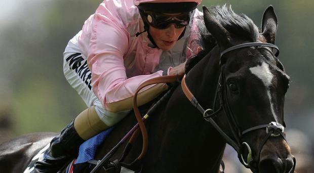 William Buick will be hoping to partner The Fugue to another victory at Sandow