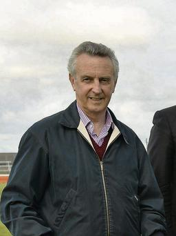 Jim Bolger has high hopes for Trading Leather