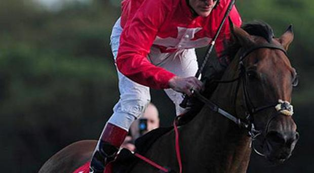 Gordon Lord Byron pictured under the mount of Johnny Murtagh