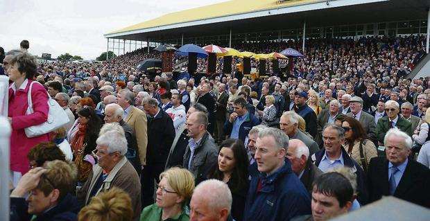 A view of the Listowel races